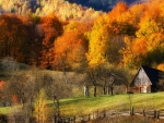 New England Autumn