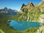 Lake O'Hara, Yoho National Park, B.C.