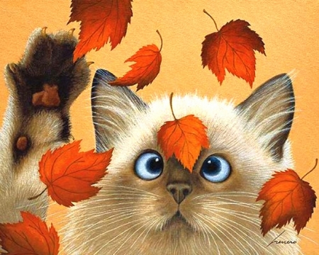Kitty of Fall
