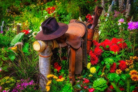 Hat, Saddle and Gun - gun, saddle, flowers, garden, summer, nature, hat, lovely still life, love four seasons, photography