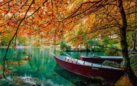 Autumn Afternoon - autumn, leaves, boats, water, canoe, lake