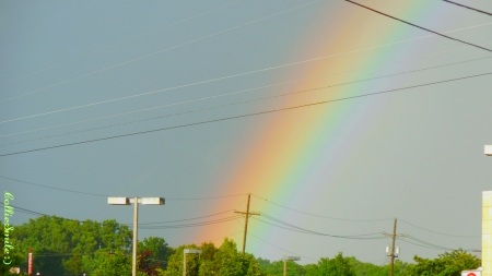 A Rainbow Close Up - rainbow, trees, wires, orange, co1orful, scarlet, yellow, indigo, skies, rainbows, natura1, green, blue