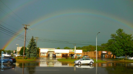 The Whole (Double) Rainbow - reflections, pavement, automobiles, co1orful, buildings, rainbow, trees, wires, cars, rainbows, double rainbow, natura1, Traffic Signals nSigns