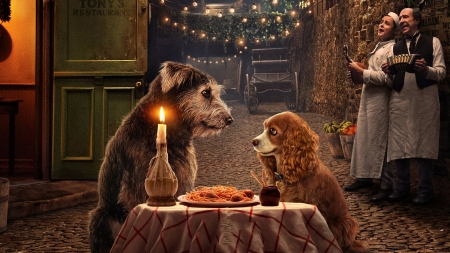 Lady and the tramp 2019 - fantasy, luminos, movie, caine, disney, dog, poster, candle, lady and the tramp, couple