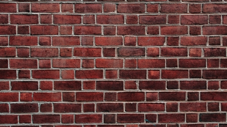 Bricks - wall, brick, seyi ariyo, texture, brown