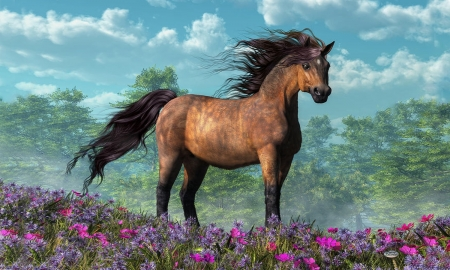 Lovely Horse Artwork