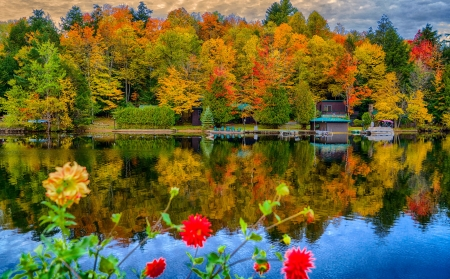 Autumn lake - trees, lake, forest, colorful, fall, autumn, beautiful, tranquil, serenity, wildflowers, mirror, lakeshore, reflection