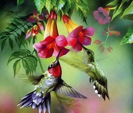Hummingbirds And Flowers - Beautiful, Flowers, Hummingbirds, Wings, Painting