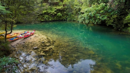 Paradise - rocks, transparent, beauty, New Zealand, river, canoe, trees, kayak, nature