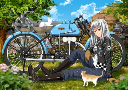 :-) - girl, anime, manga, bike, tagme, cat, pisici, blue, green