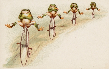 4 frogs biking - frogs, bikes, sand, green