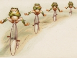 4 frogs biking