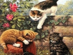 3 cute playing kittens