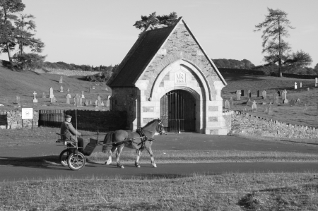 Day trip - Irish, Ireland, Horse, Cart, Cemetery