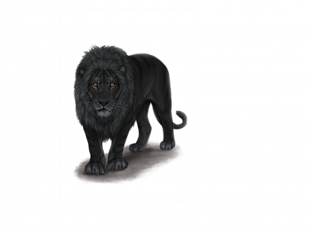 Black Lion Fantasy Abstract Background Wallpapers On Desktop Nexus Image 2511450