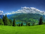 Green Meadow And Mountains