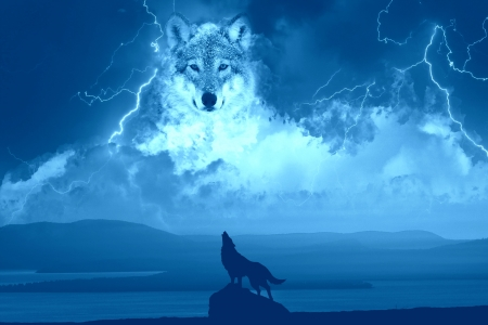 Spirit Of The Wolf Dogs Animals Background Wallpapers On