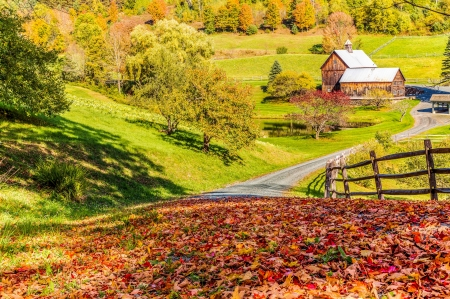 Autumn in Vermont - village, peaceful, colorful, fall, house, autumn, Vermont, beautiful, foliage, countryside, leaves, road