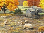 Sheep In Autumn