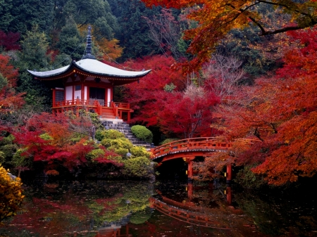 Autumn In Japan - Japan, Red, Trees, River, Leaves, Autumn, House