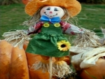 Girl Scarecrow With Pumpkins