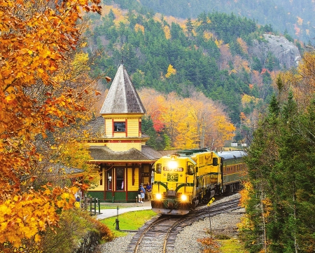 Scenic Train - station, leaves, railways, trees, mountains