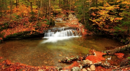 Waterfall in motion - autumn, waterfall, nature, landscape, scene, fall, forest, stream, foliage, wallpaper