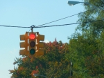 Red Light, Red Leaves