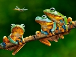 Three Frogs and Dragonflies