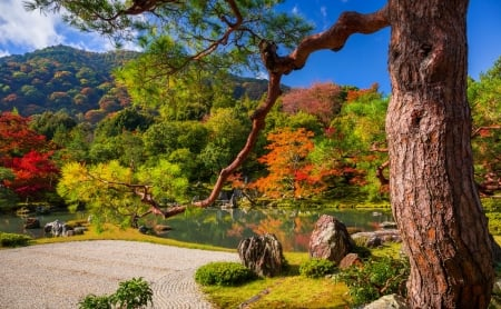 Autumn at zen garden - park, beautiful, fall, autumn, Japan, colors, lake, pond, serenity, temple, garden, reflection