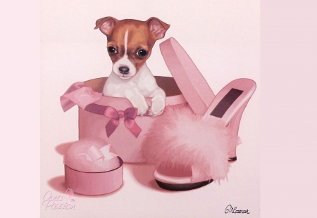 ♥ - shoe, pink, puppy, dog, animal, box, caine, sweet, cute, fantasy, maryline cazenave