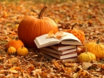 Books Leaves Pumpkins