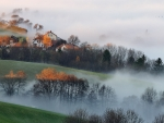 Autumn Morning Mist