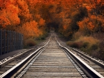 Autumn railway bridge