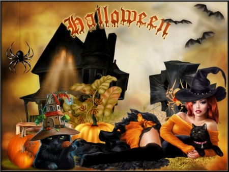 WITCH'S HALLOWEEN - FEMALE, CATS, WITCH, PUMPKINS, BATS, SPIDER