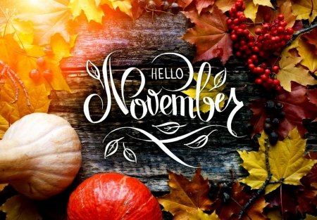 Hello November Photography Abstract Background