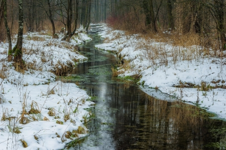Forest Stream in Winter - Snow, Streams, Winter, Nature, Forests