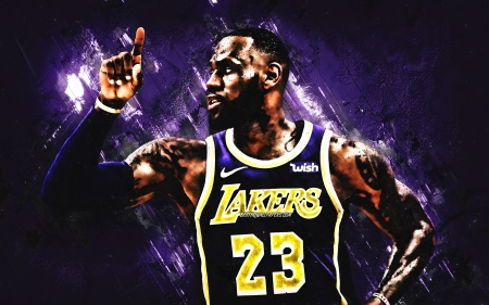 LeBron James - lebron, american, king, lebron james, la lakers, lakers, sport, nba, nike, basketball, legend, los angeles lakers