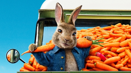 Peter Rabbit 2018 Movies Entertainment Background Wallpapers On Desktop Nexus Image 2520046