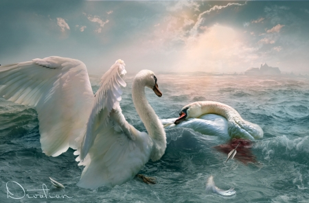 Devotion - lebada, swan, white, art, luminos, devotion, vera chernyshova, fantasy, water, bird, pasari, sad