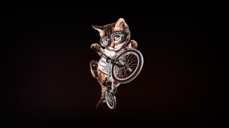 :) - fantasy, black, bmxart, pisici, bmx, cat, minimalism, bycicle, cute, bike