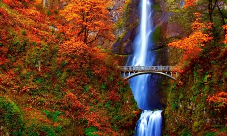 Waterfall - oregon, waterfall, autumn, bridge