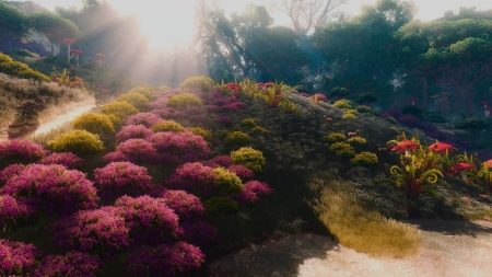 Garden and Parks - forest, sun, flowers, garden, nature, park, trees, lights