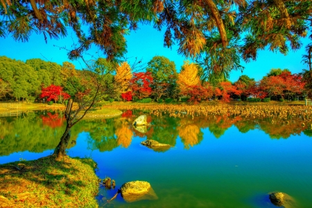 Autumn park - Photo, Park, Japan, Nature