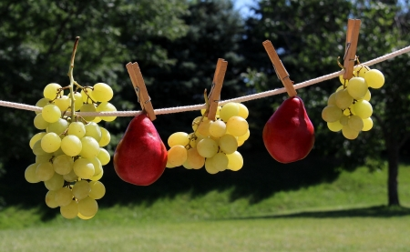 :) - fruit, red, grapes, autumn, pear, green, funy, toamna