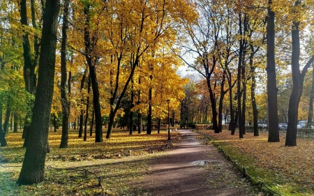Autumn in St. Petersburg, Russia - autumn, park, Russia, trees, path