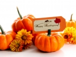 Thanksgiving With Pumpkins