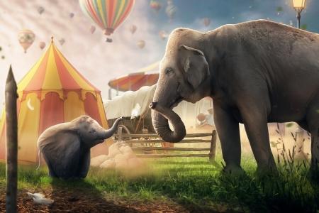 Dumbo 2019 Movies Entertainment Background Wallpapers On Desktop Nexus Image 2521798