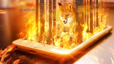 The fearless fox - fire, vulpe, fantasy, fox, luminos, orange, phone, aeol op