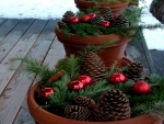 Baubles and Pine Cones